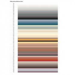 Silicone Color 01 310ml. Kerakoll