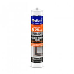 ORBASIL N-25 300 ml Gris antracita RAL 7016
