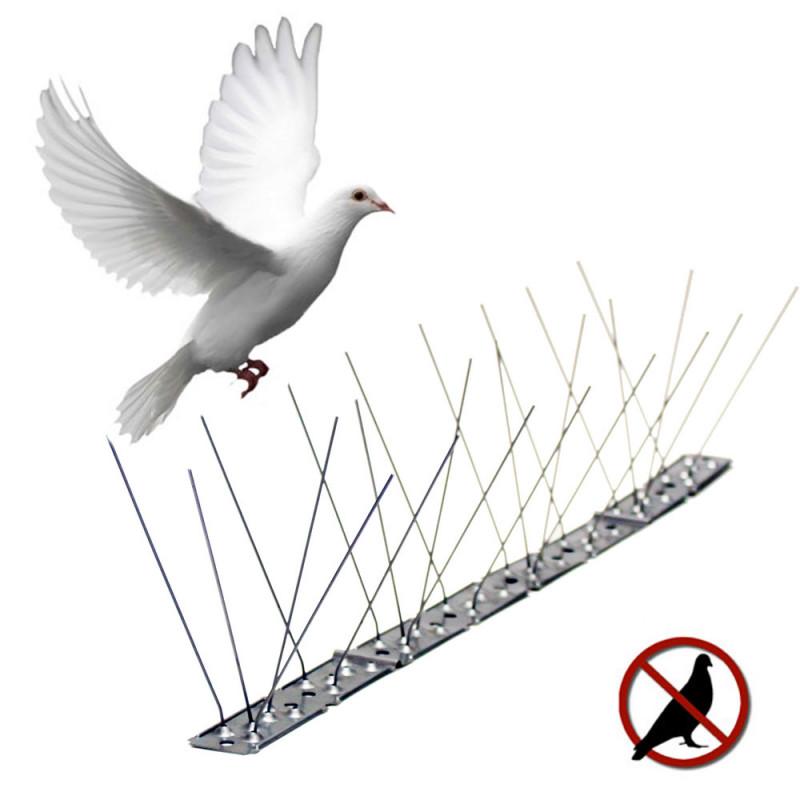 Disuasorio para aves varillas inox.
