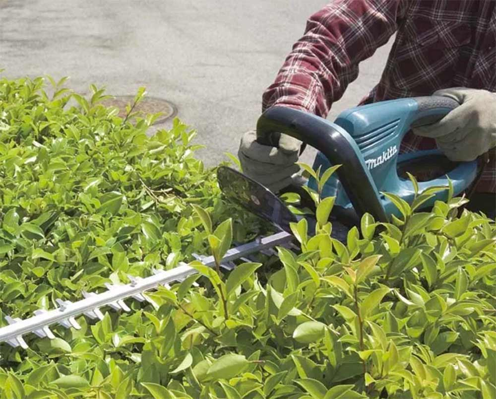 cortasetos jardín
