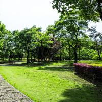 Los mejores productos para tu jardín en oferta